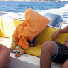 Jacques covered in Akela's beach towel...