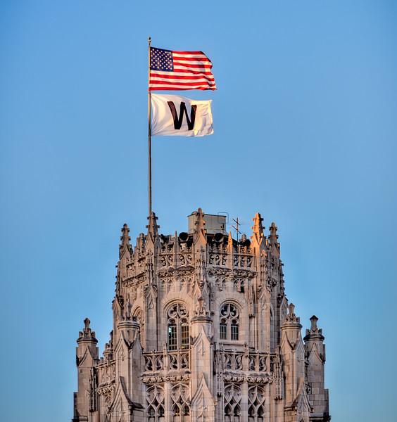 W Flag Series - Daylight