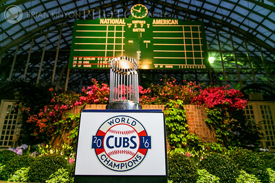 2016 World Series Cubs Trophy at the Garfield Park Conservatory!
