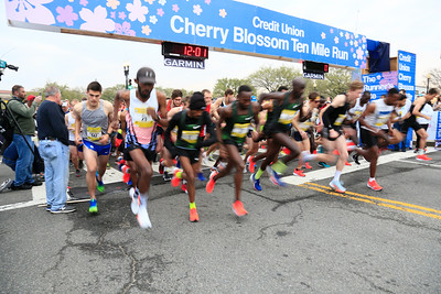 Men's Start, 2019 Credit Union Cherry Blossom Ten Mile Run - photo by Bob Burgess