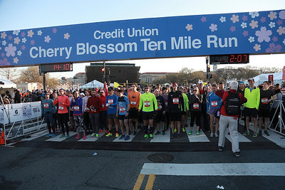 Another wave starting at the 2017 Credit Union Cherry Blossom Ten Mile Run