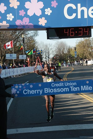 Men's Winner, 2017 Credit Union Cherry Blossom Ten Mile Run