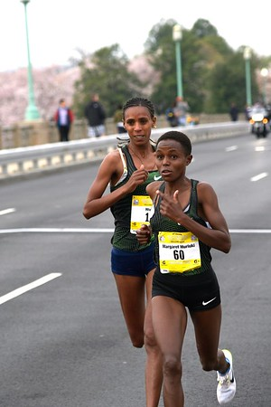 Elite Women on Kutz Bridge, 2019 Credit Union Cherry Blossom Ten Mile Run - photo by Team Mallet