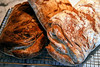Ciabatta, Peter Reinhart BBA recipe, my first loaves