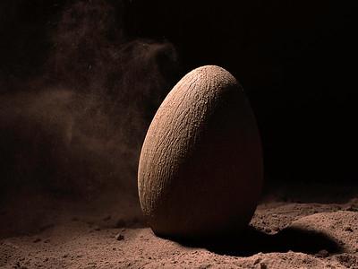 L'oeuf de Pâques de Christophe Adam ( L' Eclair de Génie )