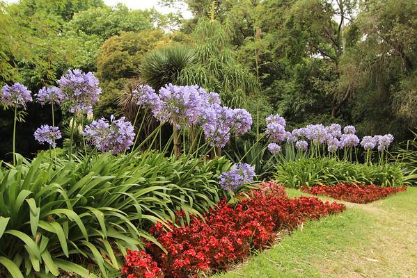 Buenos Aires Botanical Garden, January 2012