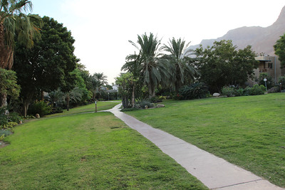 The Botanical Garden at kibbutz Ein Gedi