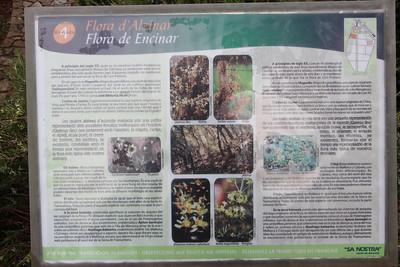 Information sign (Jardí Botanic de Sóller - The Sóller Botanic Garden)