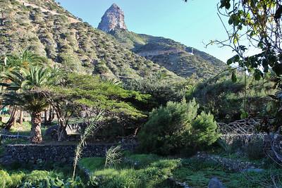 (Jardín Botánico del Descubrimiento de Vallehermoso)