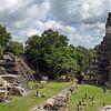 Temple Of The Great Jaguar In Tikal