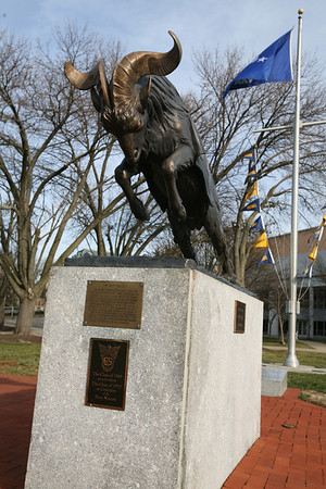Mascot, Naval Academy  Annapolis, MD