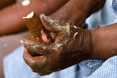 Peeling cassava.