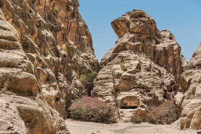 Bushes and cliffs of Little Petra