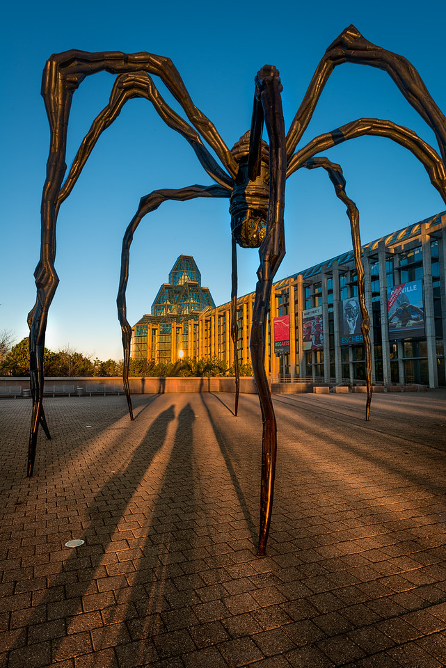 Louise Bourgeois's Maman spider sculpture and the web it cast in shadows at dawn