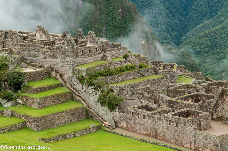 Stone terraces and buildings of the Industrial District, Machu Picchu, Peru