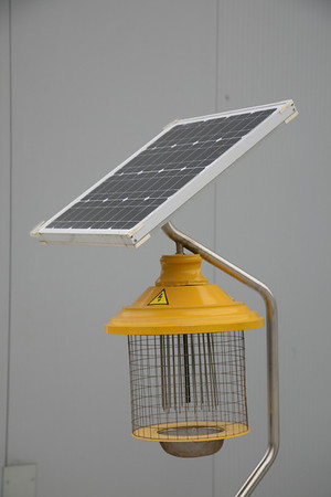 Mosquito Zapper Powered by Solar Panel at Shanghai World Expo 2010