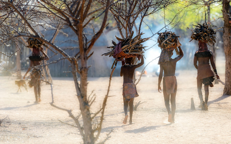 Himba people fetching firewood on a calm yet smoky and dusty morning.  Namibia, Africa