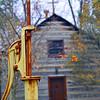 230 - Log Chapel, Notre Dame