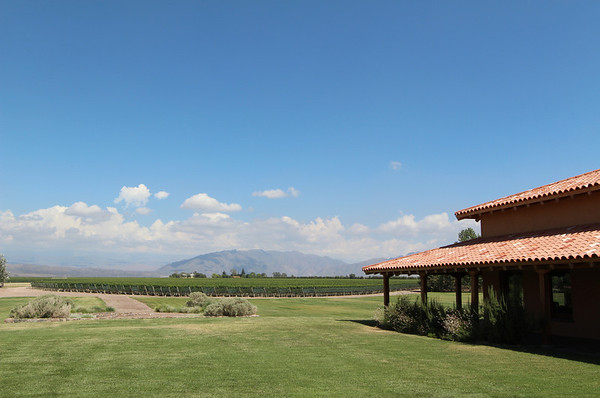 Visit to a vineyard in Mendoza, January 2012