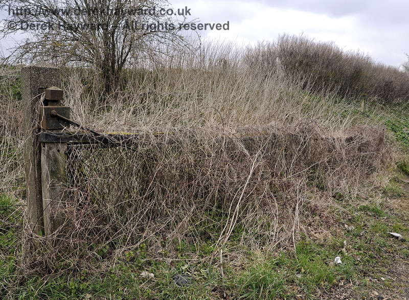 A photograph taken early in the year (before the usual thick green undergrowth had developed) shows one of the former level crossing gates at Barcombe Mills station, almost completely swallowed by last year's growth.  03.04.2013  6570
