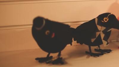 Spooky Birds S1 E3
