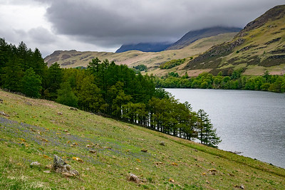 Buttermere and Bluebells