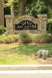 Arcanum Estate Community-Cumming GA (5)