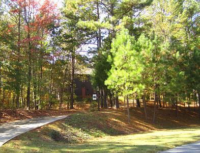 Bentley Hill Cumming GA Homes (21)