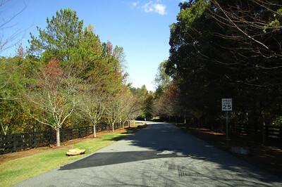 Bentley Hill Cumming GA Homes (3)