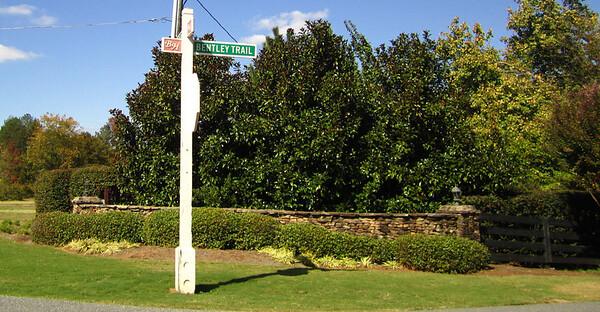 Bentley Hill Cumming GA Homes (2)