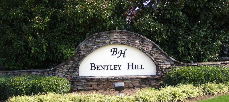 Bentley Hill Cumming GA Homes (1)