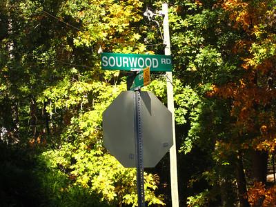 Brannon Woods Cumming GA (11)