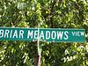 Briar Meadows Cumming GA (3)