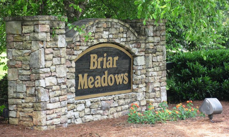 Briar Meadows In Cumming Georgia