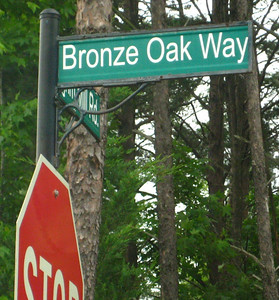 Brookstone - Cumming Georgia Neighborhood (5)