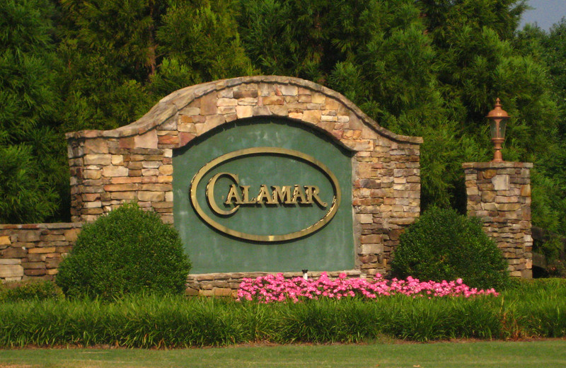 Calamar Community Cummint Georgia Neighborhood (1)