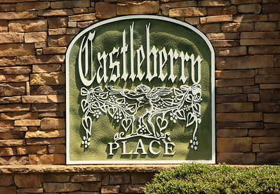 Castleberry Place-Cumming GA (4)