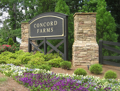 Concord Farms Georgia (5)