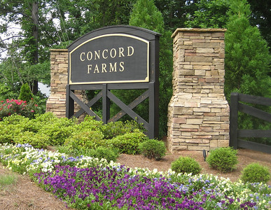 Concord Farms Georgia (3)