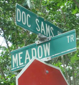 Ducktown Meadows-Cumming Georgia (2)