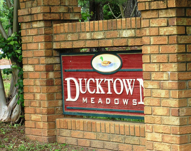 Ducktown Meadows Cumming GA