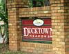 Ducktown Meadows-Cumming Georgia (3)