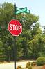 East Ridge At Stoney Point Cumming Georgia (9)