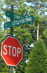 Cumming GA Community Fox Creek (3)
