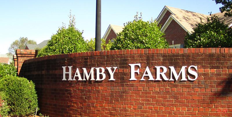 Hamby Farms Cumming GA Homes (1)