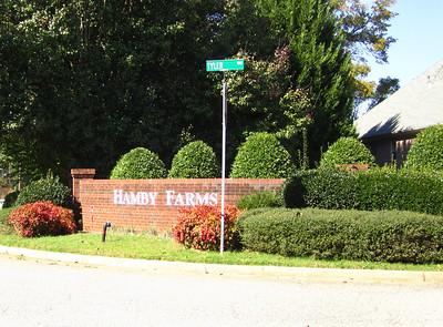 Hamby Farms Cumming GA Homes (2)