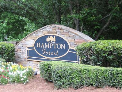 Hampton Forest-Cumming Georgia (3)