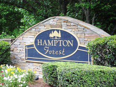 Hampton Forest-Cumming Georgia (4)