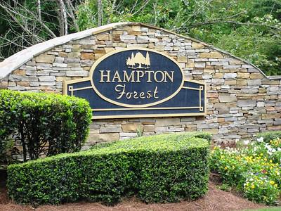 Hampton Forest-Cumming Georgia (5)