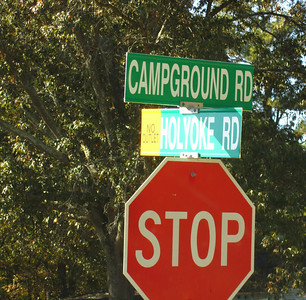 Holyoke Cummming GA Neighborhood (3)